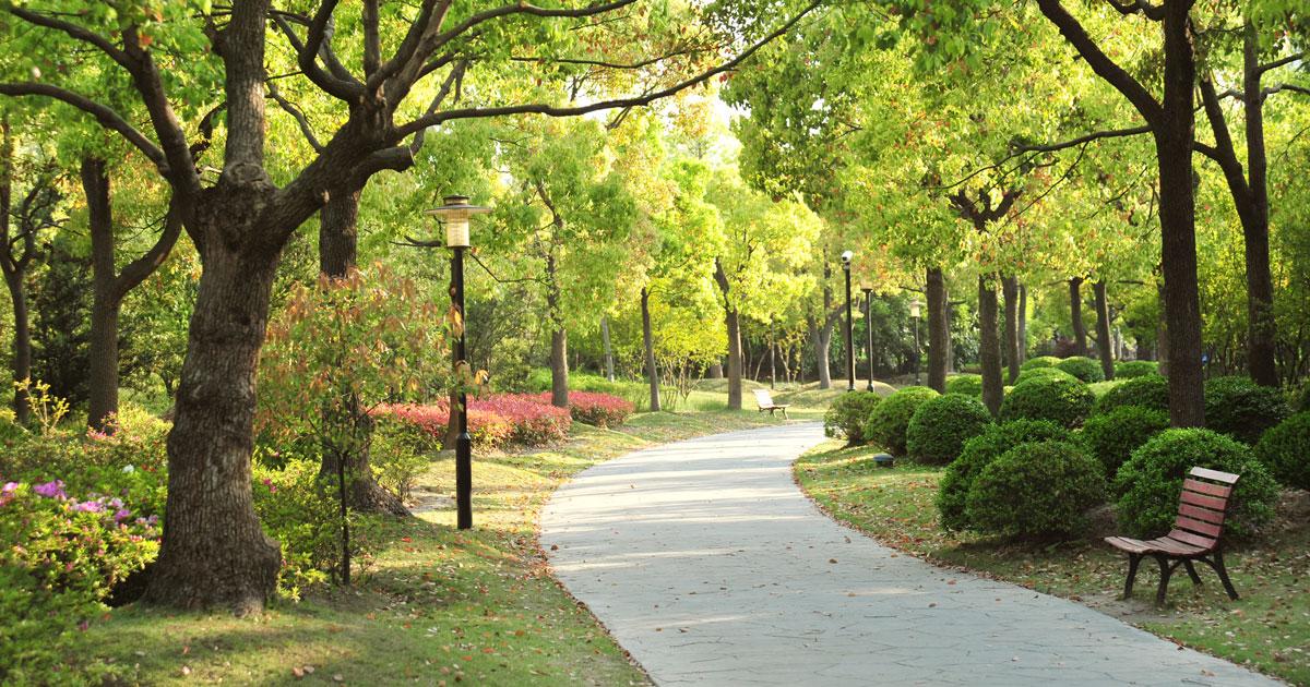 สวนสาธารณะ Park เกมส์ฝึกภาษาอังกฤษ